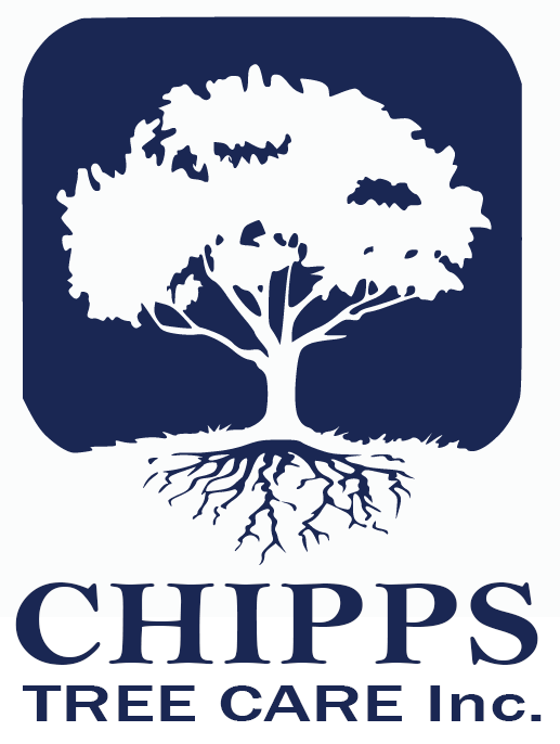 Chipps Tree Care